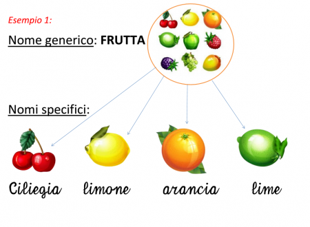 Mercoledì 11 Dicembre 2013: S in corsivo e nomi generici/specifici (Italiano)