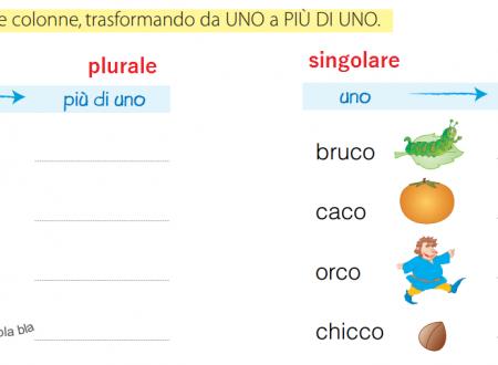Mercoledì 19 Febbraio 2014: I plurali difficili (Italiano)